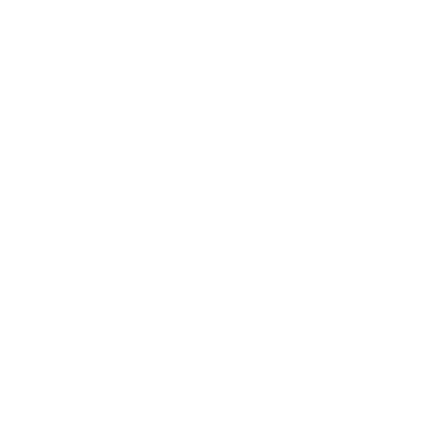 Rustic Reel Brewing Co.